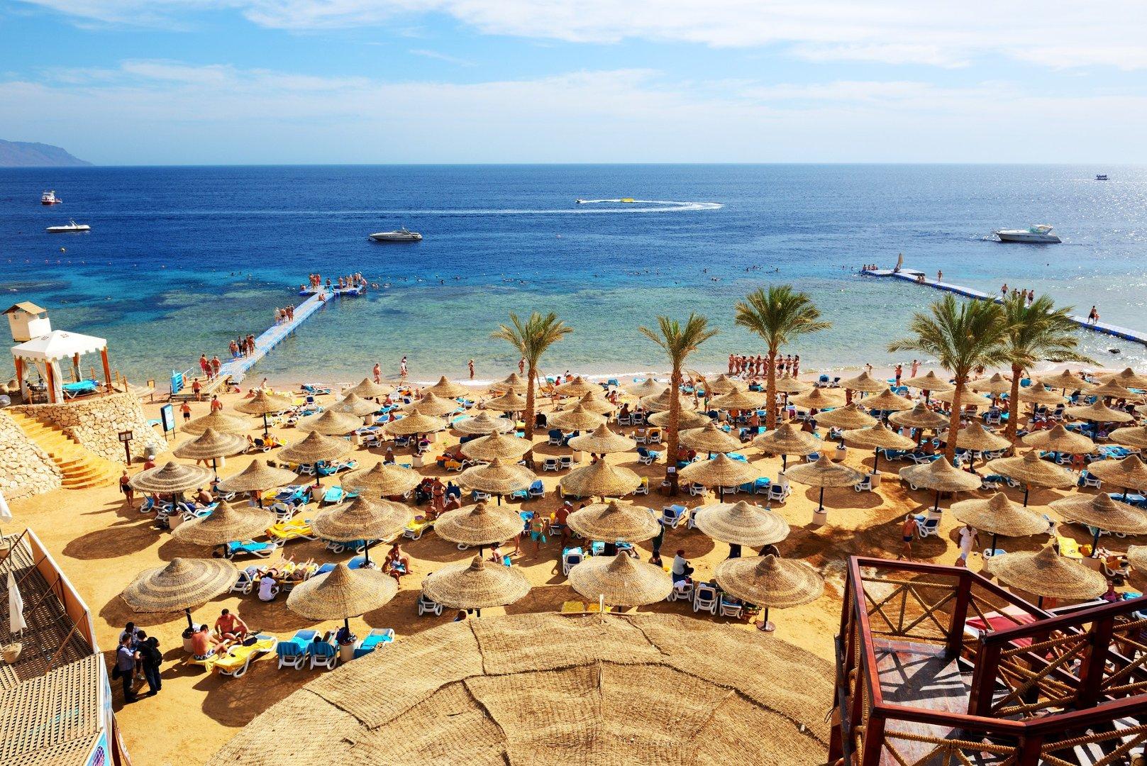 пустые курорты египта фото состав группы
